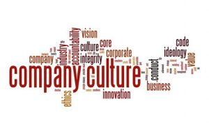 5 Things to Do to Make Sure You Fit in the Culture of Your Future Company
